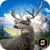 Wild Deer Hunt: Real Hunter Challenge 2016