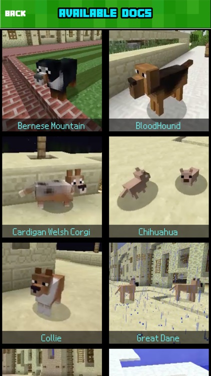 DOG MOD FREE - Pet Dogs Mods Guide for Minecraft Game PC