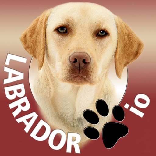 Labrador io iOS App