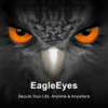 Avtech - EagleEyes-plus  artwork