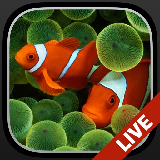 Aquarium Live Wallpapers For Lock Screen Free: Animated