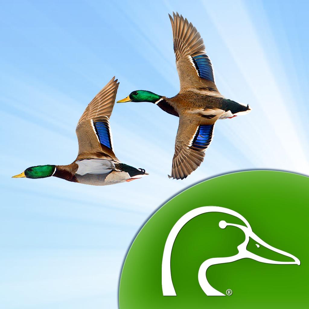 Ducks Unlimited Waterfowl Migration App | FREE iPhone & iPad ...