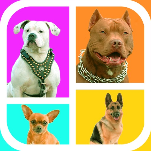Guess The Dog Breeds Foto Quiz - Watch Pet Doggie,Cute Pup or Hound Dog Pics & Answer Pedigree, New Fun Quizzes! Icon