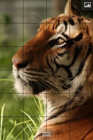 Puzzlemania - Make your photos puzzles screenshot 1