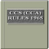The Central Civil Services - Classification Control Appeal Rules 1965