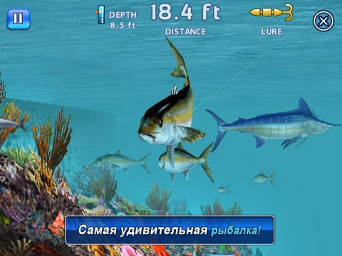 Скачать игру Fishing Kings Free+