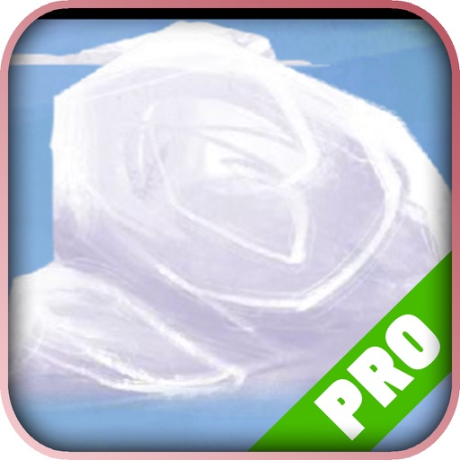 Game Pro guide - Rogue Legacy Version iOS App