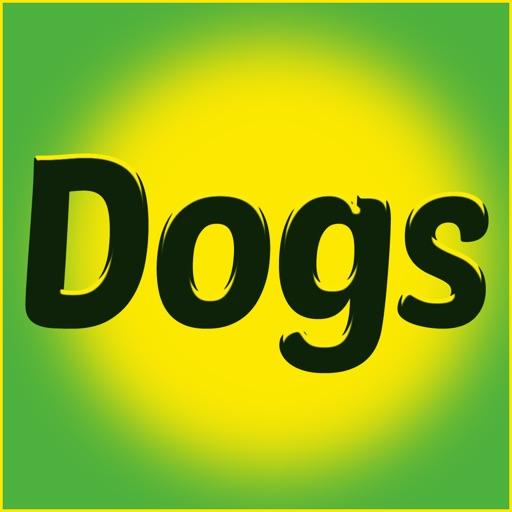 Crazy Chrarades -Dog Day Edition iOS App