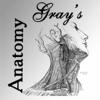 Gray's Anatomy 2014