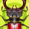 Kids Game - Bugs Collector