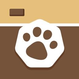 Telecharger 犬や猫のかわいい動物写真満載 パシャっとmyペット Pour Iphone Sur L App Store Photo Et Video