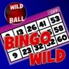 Bingo  Wild HD