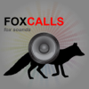 REAL Fox Hunting Calls-Fox Call-Predator Calls