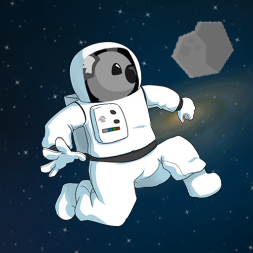 Koala in Space Icon