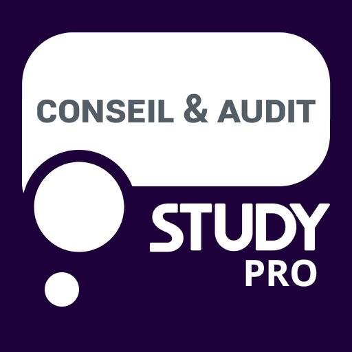 Study PRO Conseil Audit
