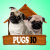 Mitee Games - Pugs IO artwork