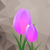Color Recolor Effects Pro - Black & White Photo Editing App to create color effects