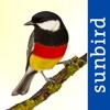 Alle Vögel Deutschland - ein vollständiger Naturführer zu allen Vogelarten Deutschlands