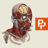 Head: 3D Real-time Human Anatomy - Subscription