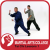 Tai Chi Qi Gong Lessons 1 - M.A.C. Martial Arts College