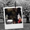 Glamorous Photo Frame - Make Awesome Photo using beautiful Photo Frame program photo frame studio