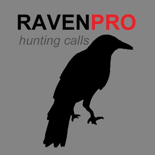 REAL Raven Hunting Calls -- 7 REAL Raven CALLS & Raven Sounds! - Raven e-Caller - BLUETOOTH COMPATIBLE iOS App