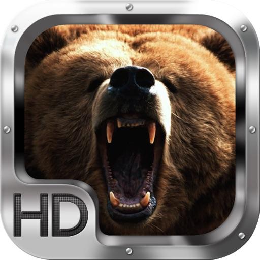 Bear Hunting 2 iOS App