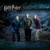 哈利波特-Harry Potter中英对照脚本CD音质mp3