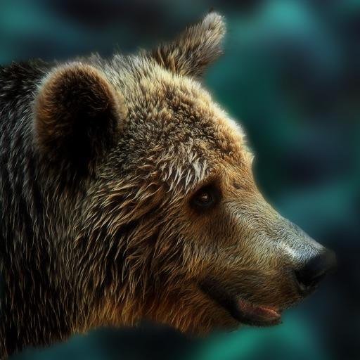 Bear Escape iOS App