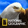 National Geographic Birds: Field Guide to North America