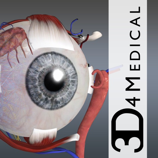 眼部科学:Eye – Practical Series