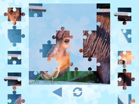 Horse Puzzles for girls: jigsaw puzzle fun with many different horses screenshot 1