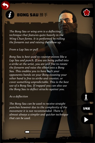 Ip Man Wing Chun Kung Fu : SLT screenshot 3
