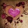 قصائد الحب
