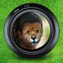 Animal Face Maker - Turn Your Photo to Cute Cat, Dog, Fox, Wolf, Cheetah, Tiger or Other Wild Animals! icon