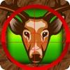 Animal Hunter Games on Deer Island
