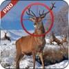 Mountain Sniper Deer hunter 2016