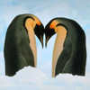 Osman UNAT - Penguins Premium Photos and Videos  artwork