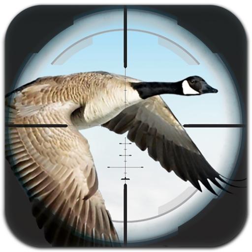 Flying Bird Hunting iOS App