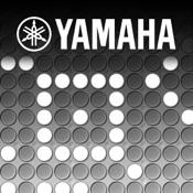 YAMAHA TNR-i