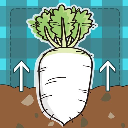 Quick! pull up radish iOS App