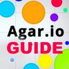 Companion Guide For Agar.io - Skins, Tricks And More!