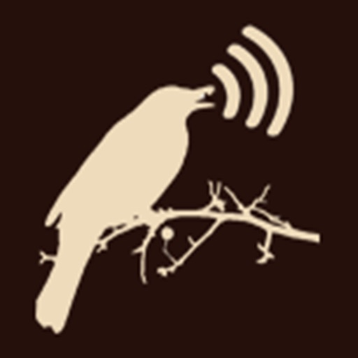 اصوات الطيور - السنيدي للوازم الرحلات