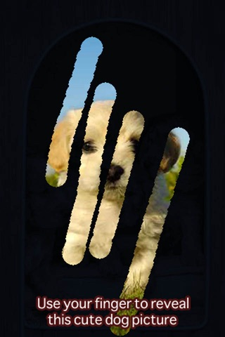 A Dog game to scratch Hidden Pics - Mini game for Kids - Playing cool breed games - animal best dogs pics screenshot 2