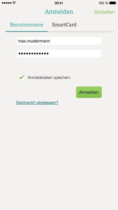 DATEV Screenshot