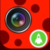 LadyBug Filter Cam +