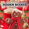 Hidden Scenes - Cozy Christmas