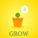 Lucky Cactus Grow