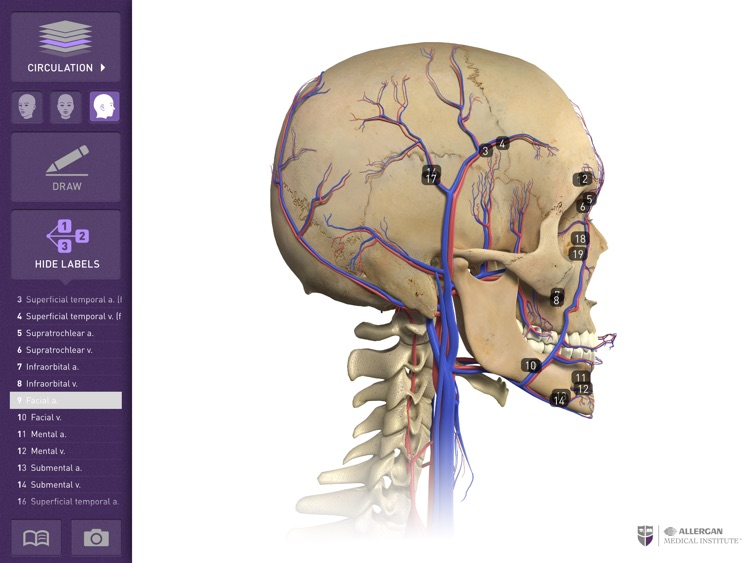 Interactive Anatomy Eg By Allergan Inc