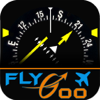 HSI (IFR) Instructor by FlyGoo